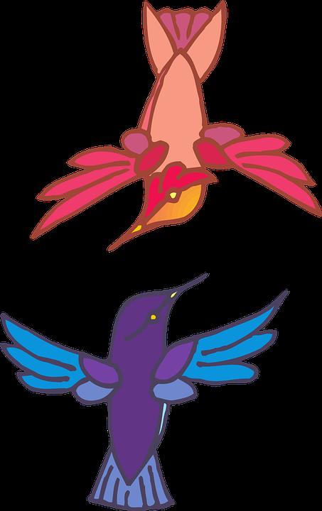 Bird talking drawing