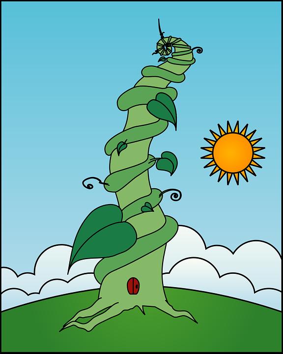 tree to sky