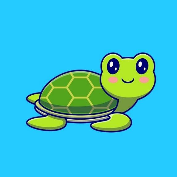 Tortoise story