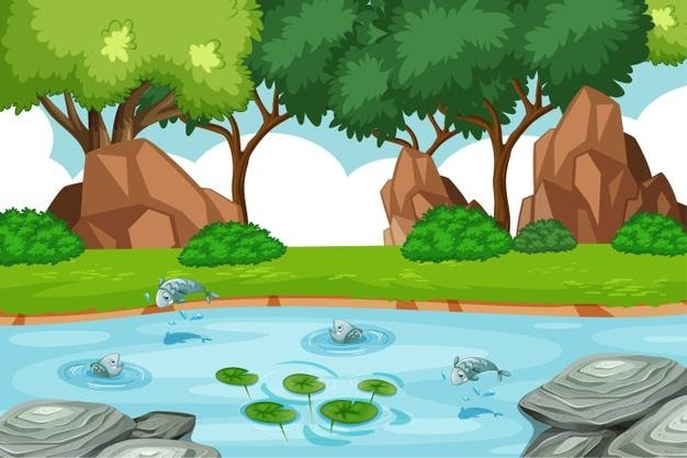 Fishes in Pond