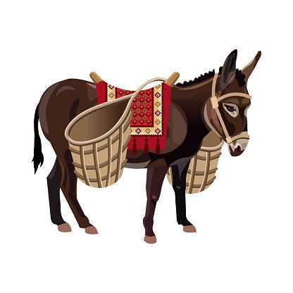 Washermans Donkey
