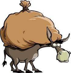 Foolish Donkey