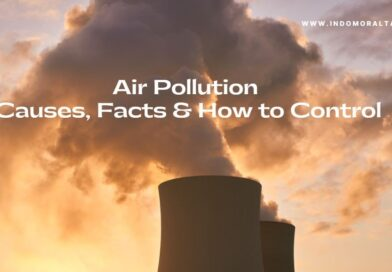 Air Pollution Essay in English